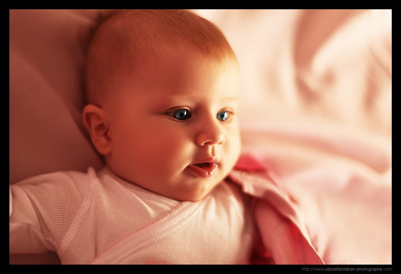 Photographe Bebe Portrait