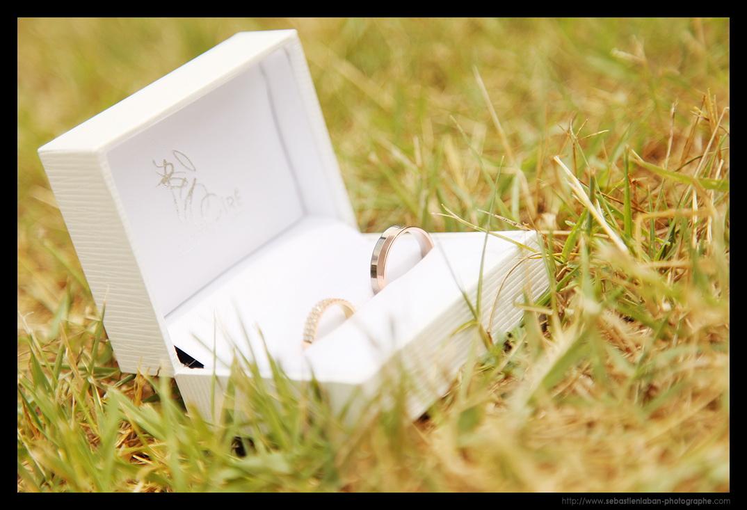 photographe mariage les alliances de mariage photographe de mariage lyon nice cannes monaco. Black Bedroom Furniture Sets. Home Design Ideas